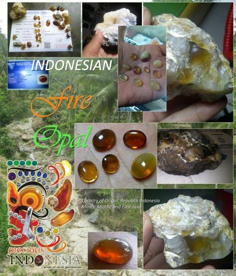 Diketemukan di Wilayah Jawa Tengah dan Jawa Timur bagian Selatan berbatasan dengan Samudera Indonesia